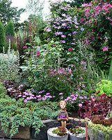 Welcome to my garden gallery Brick Garden, Exotic Plants, Northern California, Welcome, Garden Design, Cottage, Outdoor Structures, Gallery, Elf