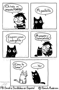Sarah Andersen Sarah's Scribbles hilarious cat comics for cat owners about pet cats and kittens. Memes Humor, Funny Memes, Funny Gifs, Funny Cute, The Funny, Hilarious, Cat Comics, Funny Comics, Girls Problems