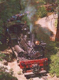Yosemite sightseeing, Yosemite Mountain Railroad, Yosemite train, Northern California vacation  This was a fun experience. I would like to do it again.