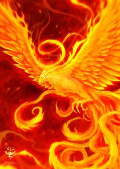 The Phoenix by amorphisss on DeviantArt Phoenix Artwork, Phoenix Images, Fantasy Creatures, Mythical Creatures, Dragons, Phoenix Design, Flame Art, Phoenix Bird, Fantasy Art