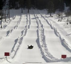 Take the family sledding and grab a cup of hot cocoa at Gorgoza Park!
