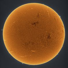 The sun imaged in Hydrogen-Alpha and artificially colored. The sun will grow more active with many sunspots appearing in the next few years as we approach solar maximum.