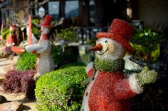 Christmas has arrived to Boracay in the Philippines.  Check out the gift guide for travel lovers, too.
