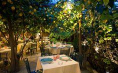 Da Paolino Lemon Trees Restaurant - Capri, Italy Via Palazzo a Mare, 11 80073 Capri (Napoli) ITALY - Phone +39 081 8376102 - Mob. +39 340 4000304  Da Paolino Lemon Trees Restaurant - Capri, Italy