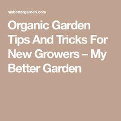 Organic Garden Tips And Tricks For New Growers – My Better Garden
