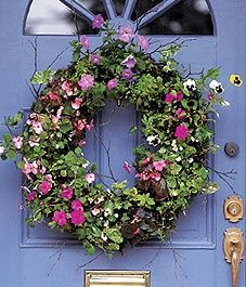 I really want to make one of these;  Living Wreath - Canadian Gardening