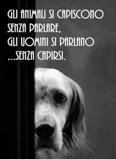 animals will understand without speaking, men speak without understanding each other.