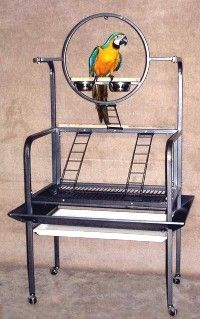 Palmetto Parrot Play Stand Large Ring by HQ