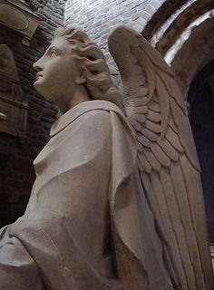 angel #angel Angel