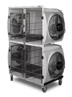 No Heat Double Dryer Cage by Pet Shop, Dog Grooming Shop, Dog Grooming Salons, Dog Grooming Business, Dog Spa, Pet Hotel, Dog Salon, Dog Wash, Dog Daycare
