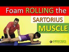 Foam Rollling the Sartorius Muscle - YouTube