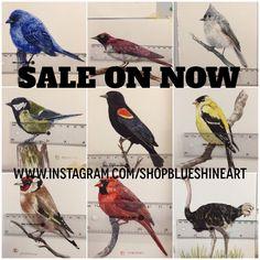 Original Bird Art NOW on SALE !      www.instagram.com/shopblueshineart