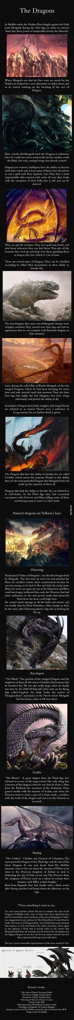 Dragons - J.R.R. Tolkien's Mythology - 9GAG