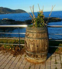 #Mallorca Ausflüge. Bei Cala Bona.