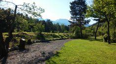 Camping les Prairies 04140 Seyne les Alpes - Arboretum