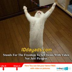 10dayads.com for the freedom to sell items with Video not just picture. #FreeOnlineVideoClassifiedAds