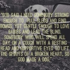 And so God made a dog.