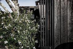 Architecture, Plants, Home, Arquitetura, Plant, Architecture Design, Planets