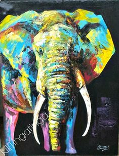 Image result for colourful elephant
