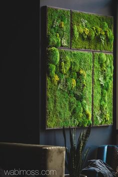 Real Preserved Moss Wall Art Green Wall Collage No Sticks. No care green wall art. Real preserved moss and ferns - WabiMoss wall Real Preserved Moss Wall Art Green Wall Collage No Sticks. No care green wall art. Real preserved moss and ferns - WabiMoss Green Wall Decor, Green Wall Art, Green Walls, Green Art, Moss Wall Art, Moss Art, Art Mural Vert, Collage Mural, Deco Floral