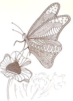 Hungry Butterfly Adult Coloring Page | Get this free printable and start relaxing immediately!
