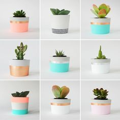 PLANT LIFE - Decoration Fireplace Garden art ideas Home accessories Painted Plant Pots, Painted Flower Pots, Concrete Crafts, Concrete Planters, Cement Planters, Concrete Garden, Ceramic Planters, Succulent Pots, Cacti And Succulents