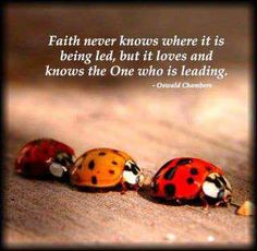 faith...loves and knows the One who is leading
