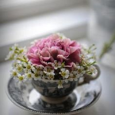 teacup of blossoms