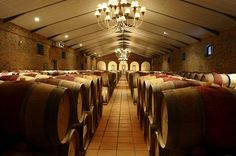 South Africa's winelands have been producing world-class wines since While… Visit South Africa, Heaven On Earth, Wine Cellar, Travel Destinations, How To Memorize Things, Around The Worlds, Ceiling Lights, Places, Wines
