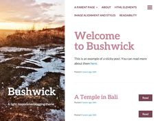 Design with simple layout and lightweight. Bushwick bring a new and fresh theme for Blogging WordPress theme. The theme buit fully responsive which can adpat all devices. Bushwick also allow...