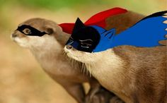 Superhero Sea Otters: Don't Worry About Climate Change, I Got This