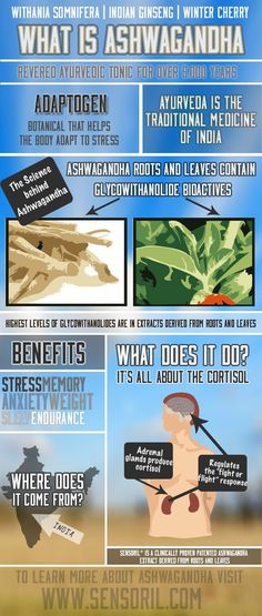 Lower Your Stress Levels With Ashwagandha http://www.thepaleodietrecipecookbook.com/the-paleo-diet-and-adrenal-fatigue