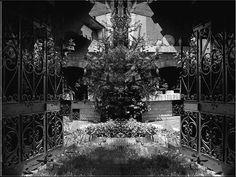 Particolare del mio giardino. by Giancarbon.deviantart.com on @DeviantArt