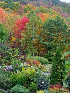 18 AMAZING fall garden design lessons.