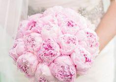 1種類のお花だけで作る花束!『シングルブーケ』がピュア可愛い♡のトップ画像