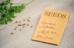 Seed packet template favours;