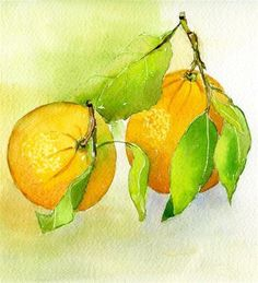 """Daily Paintworks - """"Two Oranges"""" - Original Fine Art for Sale - © Sonia Aguiar. Sold"""
