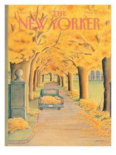november 12, 1984