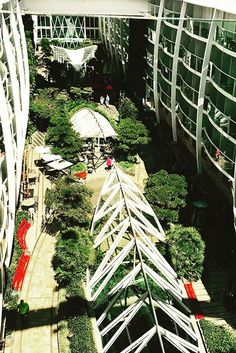 Central Park. Stroll along the crystal canopies, these glass-arched domes on Oasis of the Seas let you see the Royal Promenade down below.