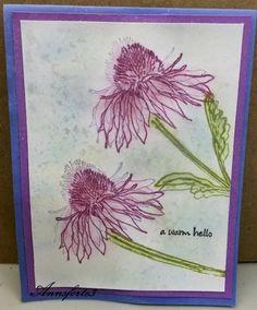 CC593 Guest Designer Sample- Ann's card
