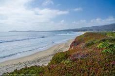Dunes Beach, Half Moon Bay, California - Cassie Kifer