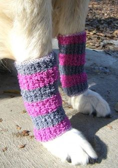 Dog Clothes - DIY Doggy Leg Warmers I cant paws-itively say I would make these, but theyre darn cute! Dollar Store Crafts, Dollar Stores, Dog Leg, Dog Items, Pet Fashion, Dog Sweaters, Pet Clothes, Dog Clothing, Crochet Dog Clothes