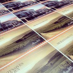 Feudo Arancio. Sicilianamente.  #Postcard #FeudoArancio