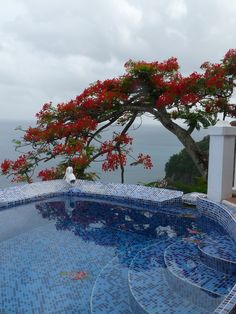 Pool at Emerald Hill Viila in Marigot Bay, Saint Lucia
