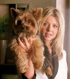 Miniature Yorkshire Terrier: Celebrities and their precious Yorkies