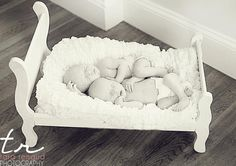 Newborn twins in a doll bed. via Tara Renaud, www.freshfacephotos.com