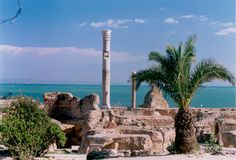 Carthage - Tunisia:  The VAST complex of Roman baths.  Carthage was kind of like the Roman version of Florida...retirement paradise.