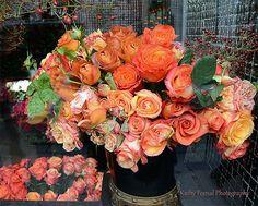Paris Roses Photography, French Market Roses, Paris Autumn Fall Roses Print, Parisian Flower Market, Paris Peach Orange Roses Photography