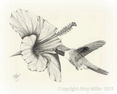 Blumen zeichnen Superb pencil drawings of flowers Drawing Sketch Artwork Wildlife Chook Hummingbird Pencil Drawing Images, Pencil Drawings Of Flowers, Flower Sketches, Bird Drawings, Drawing Faces, Drawing Sketches, Sketch Art, Drawing Flowers, Hibiscus Drawing