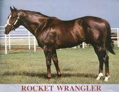 rocket wrangler [millys g-grand sire]